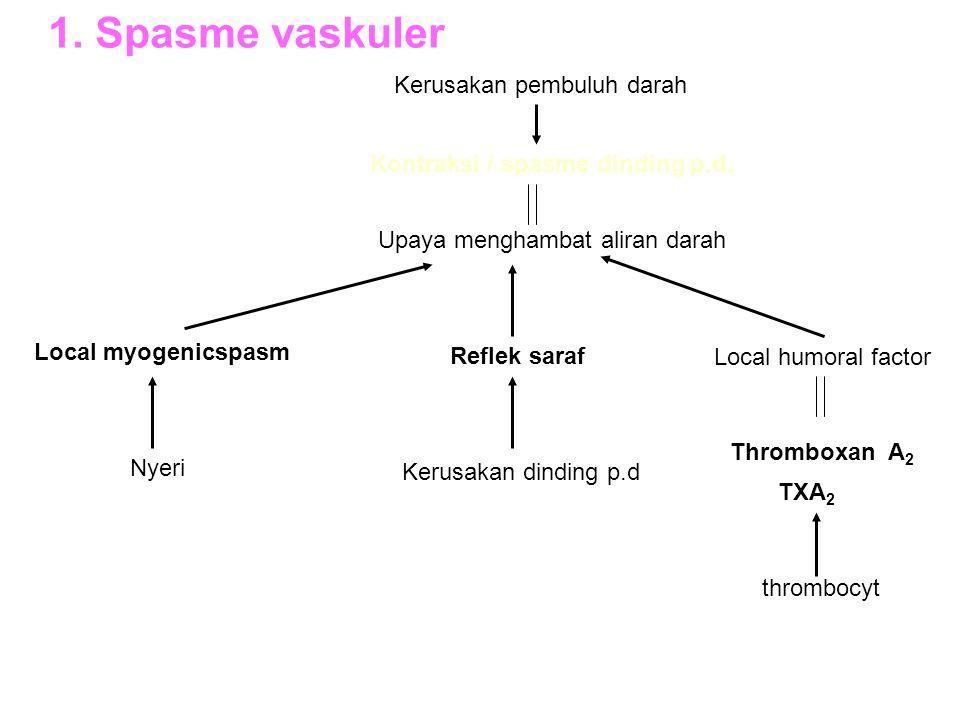 1. Spasme vaskuler Kerusakan pembuluh darah Kontraksi / spasme dinding p.d. Upaya menghambat aliran darah Local myogenicspasm Nyeri Reflek saraf Kerus