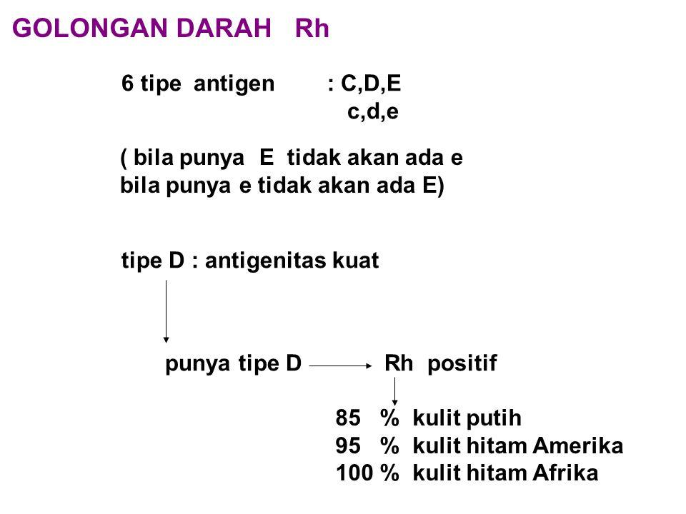 punya tipe D Rh positif GOLONGAN DARAH Rh 6 tipe antigen : C,D,E c,d,e ( bila punya E tidak akan ada e bila punya e tidak akan ada E) tipe D : antigen