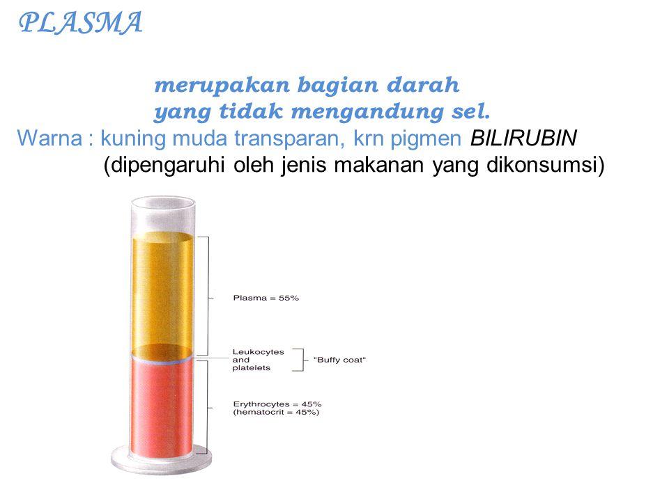 PLASMA merupakan bagian darah yang tidak mengandung sel. Warna : kuning muda transparan, krn pigmen BILIRUBIN (dipengaruhi oleh jenis makanan yang dik