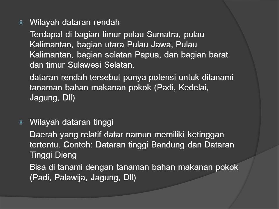  Wilayah dataran rendah Terdapat di bagian timur pulau Sumatra, pulau Kalimantan, bagian utara Pulau Jawa, Pulau Kalimantan, bagian selatan Papua, da
