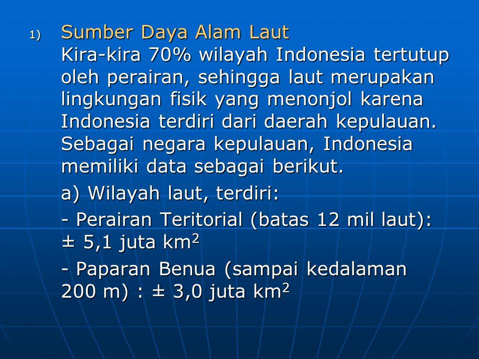 1) Sumber Daya Alam Laut Kira-kira 70% wilayah Indonesia tertutup oleh perairan, sehingga laut merupakan lingkungan fisik yang menonjol karena Indones