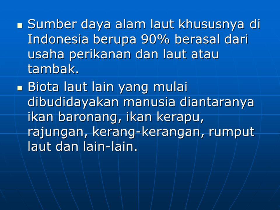 Sumber daya alam laut khususnya di Indonesia berupa 90% berasal dari usaha perikanan dan laut atau tambak. Sumber daya alam laut khususnya di Indonesi