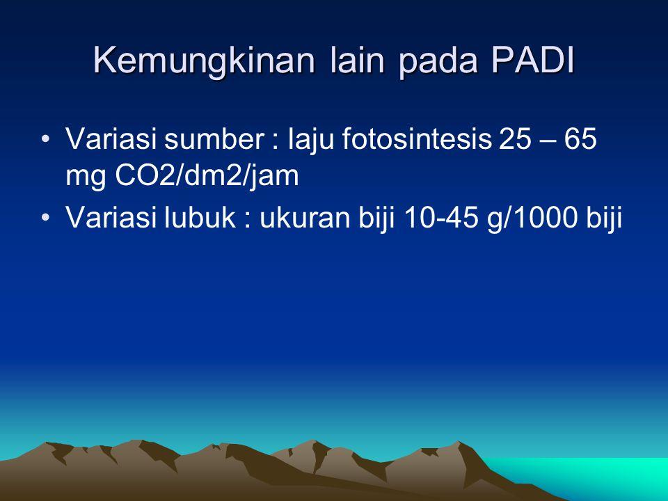Kemungkinan lain pada PADI Variasi sumber : laju fotosintesis 25 – 65 mg CO2/dm2/jam Variasi lubuk : ukuran biji 10-45 g/1000 biji