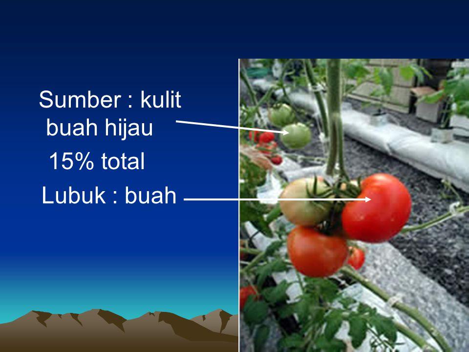 Sumber : kulit buah hijau 15% total Lubuk : buah