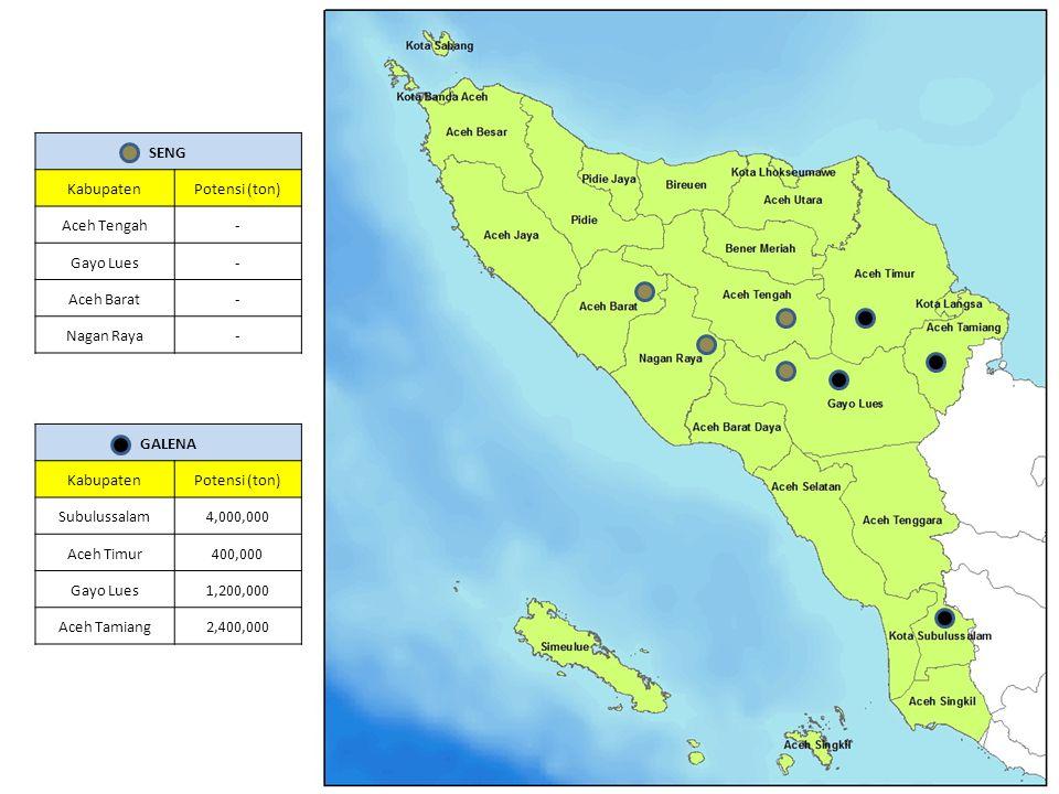 GALENA KabupatenPotensi (ton) Subulussalam4,000,000 Aceh Timur400,000 Gayo Lues1,200,000 Aceh Tamiang2,400,000 SENG KabupatenPotensi (ton) Aceh Tengah