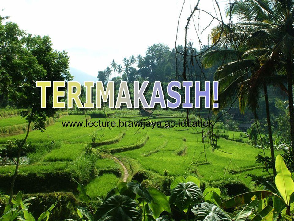 www.lecture.brawijaya.ac.id/tatiek