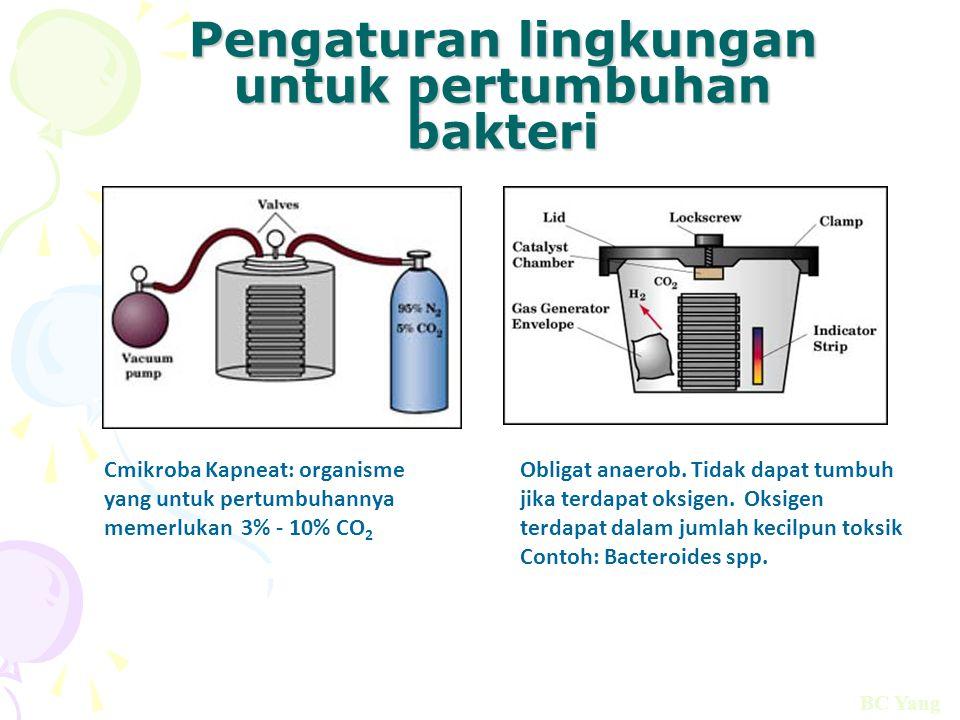 Pengaturan lingkungan untuk pertumbuhan bakteri Obligat anaerob. Tidak dapat tumbuh jika terdapat oksigen. Oksigen terdapat dalam jumlah kecilpun toks