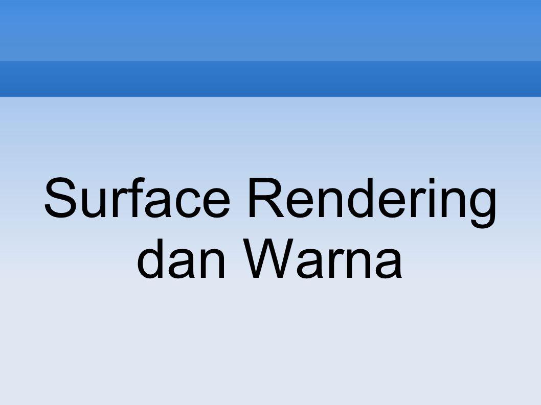 Surface Rendering dan Warna
