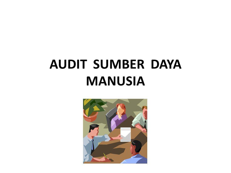 AUDIT SUMBER DAYA MANUSIA