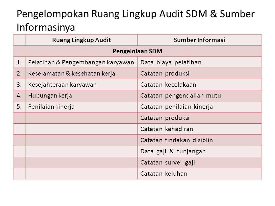 Pengelompokan Ruang Lingkup Audit SDM & Sumber Informasinya Ruang Lingkup AuditSumber Informasi Pengelolaan SDM 1.Pelatihan & Pengembangan karyawanDat