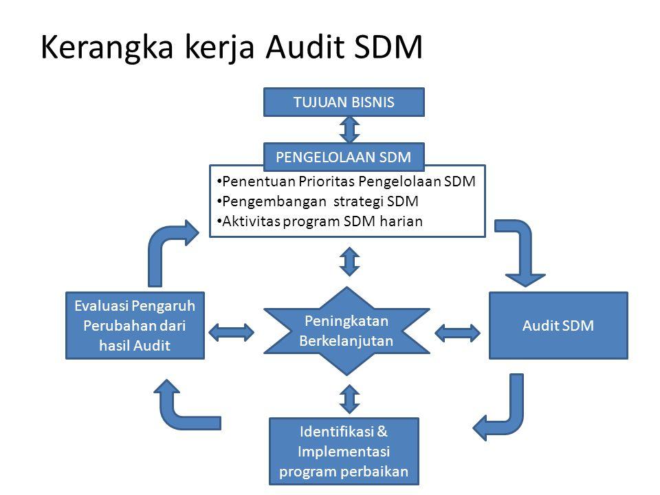 Penentuan Prioritas Pengelolaan SDM Pengembangan strategi SDM Aktivitas program SDM harian Kerangka kerja Audit SDM TUJUAN BISNIS PENGELOLAAN SDM Eval
