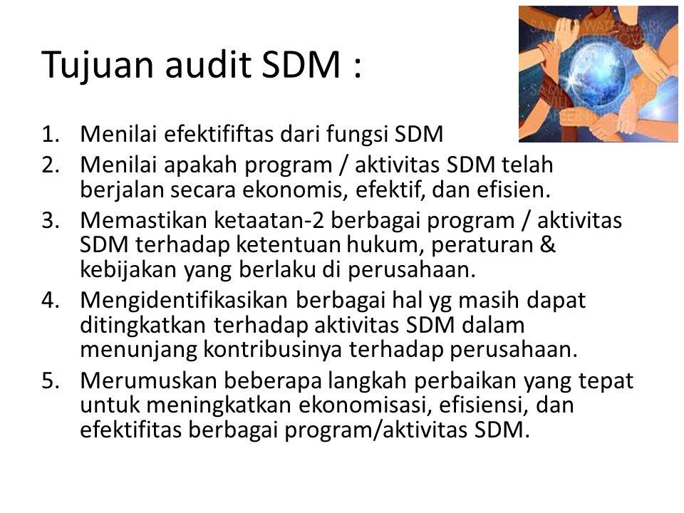 Tujuan audit SDM : 1.Menilai efektififtas dari fungsi SDM 2.Menilai apakah program / aktivitas SDM telah berjalan secara ekonomis, efektif, dan efisie