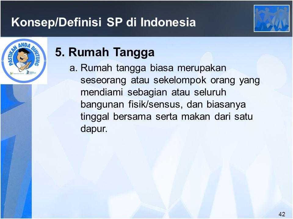 42 Konsep/Definisi SP di Indonesia 5.