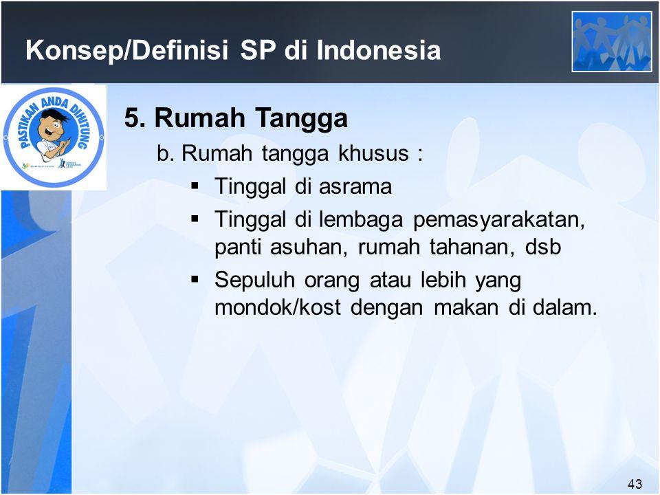 43 Konsep/Definisi SP di Indonesia 5.