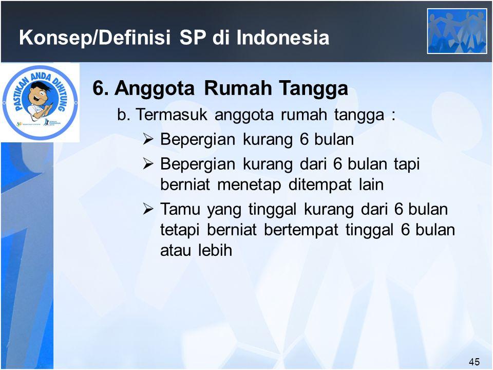 45 Konsep/Definisi SP di Indonesia 6.