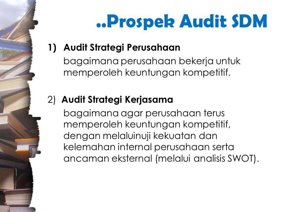 ..Prospek Audit SDM 1)Audit Strategi Perusahaan bagaimana perusahaan bekerja untuk memperoleh keuntungan kompetitif.