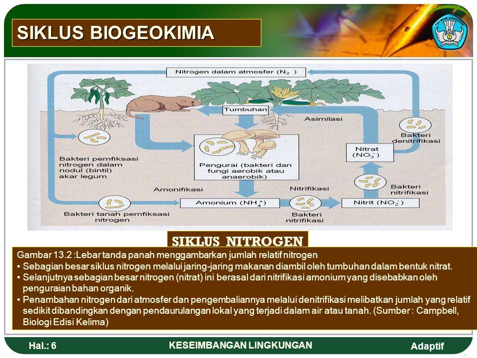 Adaptif Hal.: 6 KESEIMBANGAN LINGKUNGAN SIKLUS NITROGEN Gambar 13.2 :Lebar tanda panah menggambarkan jumlah relatif nitrogen Sebagian besar siklus nitrogen melalui jaring-jaring makanan diambil oleh tumbuhan dalam bentuk nitrat.