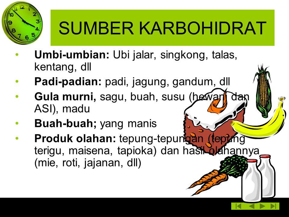 SUMBER KARBOHIDRAT Umbi-umbian: Ubi jalar, singkong, talas, kentang, dll Padi-padian: padi, jagung, gandum, dll Gula murni, sagu, buah, susu (hewani d