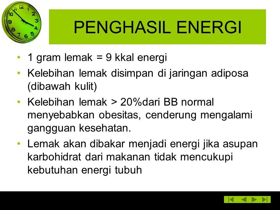 PENGHASIL ENERGI 1 gram lemak = 9 kkal energi Kelebihan lemak disimpan di jaringan adiposa (dibawah kulit) Kelebihan lemak > 20%dari BB normal menyeba