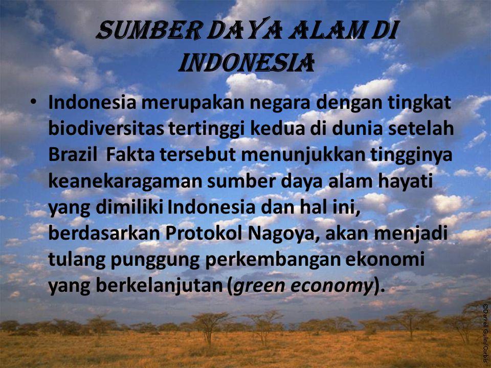 Sumber daya alam di Indonesia Indonesia merupakan negara dengan tingkat biodiversitas tertinggi kedua di dunia setelah Brazil Fakta tersebut menunjukk