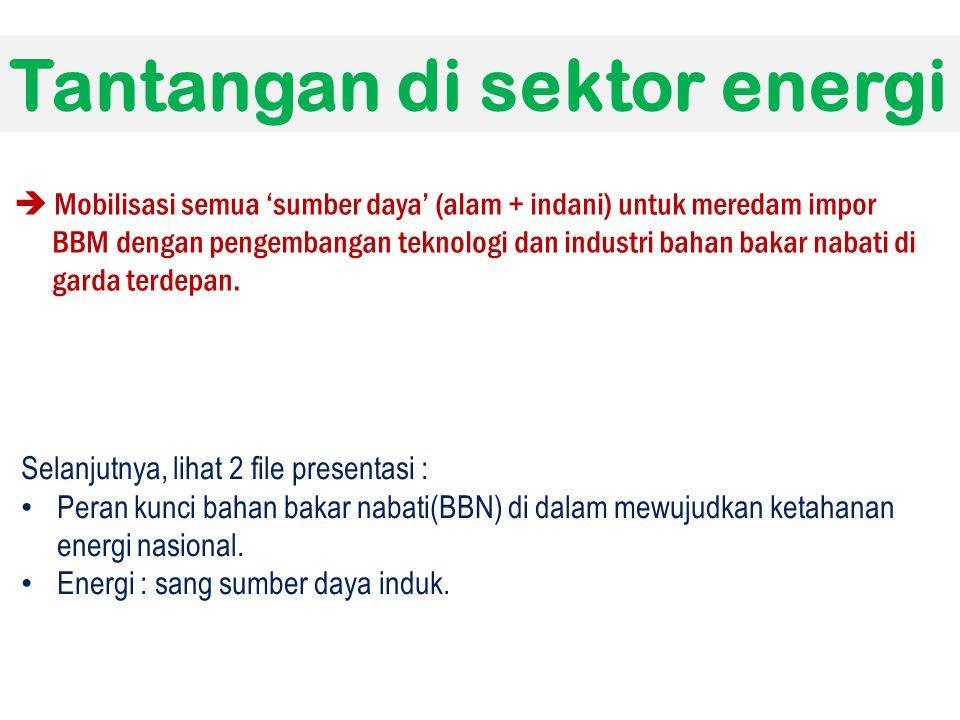 Tantangan di sektor energi  Mobilisasi semua 'sumber daya' (alam + indani) untuk meredam impor BBM dengan pengembangan teknologi dan industri bahan b