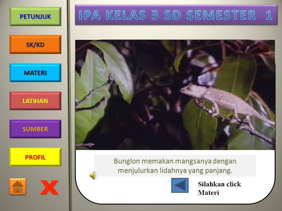 PROFIL SUMBER LATIHAN PETUNJUK SK/KD MATERI Burung mengisap madu
