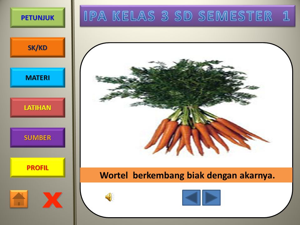 PROFIL SUMBER LATIHAN PETUNJUK SK/KD MATERI Tanaman singkong berkembang biak dengan batang.