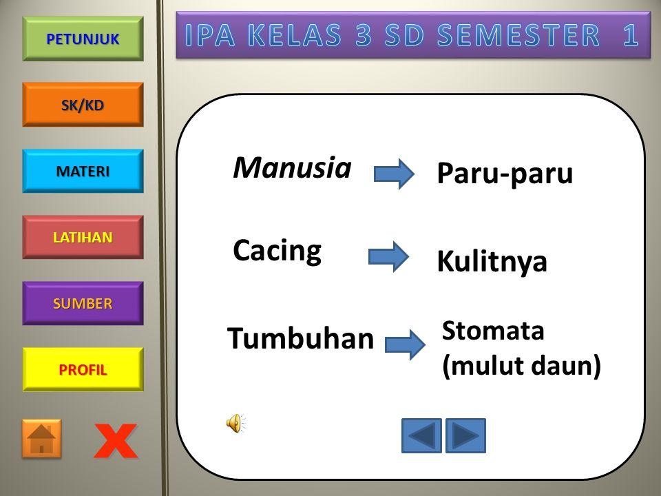 PROFIL SUMBER LATIHAN PETUNJUK SK/KD MATERI Pembakaran zat makanan menghasilkan energi (tenaga). Energi digunakan untuk melakukan berbagai kegiatan Co