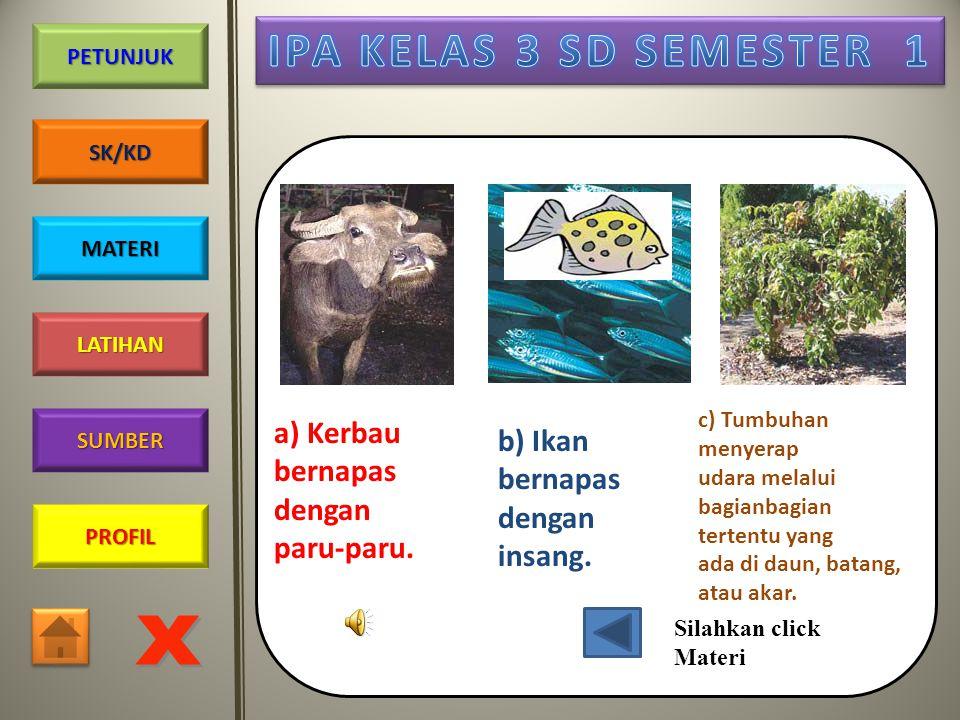 PROFIL SUMBER LATIHAN PETUNJUK SK/KD MATERI Manusia Cacing Tumbuhan Paru-paru Kulitnya Stomata (mulut daun)