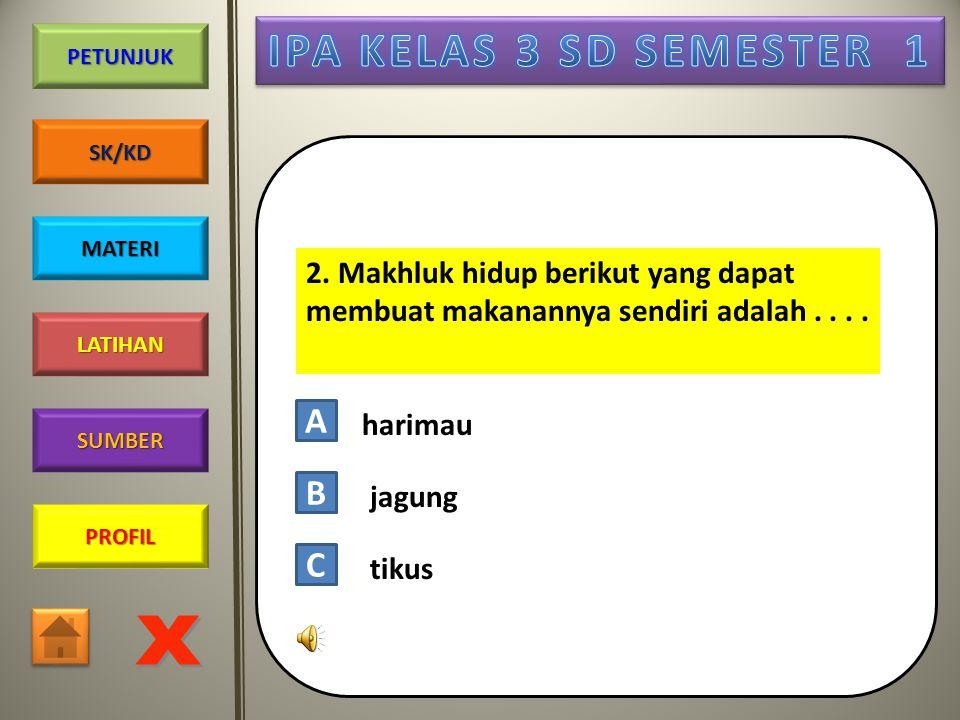 PROFIL SUMBER LATIHAN PETUNJUK SK/KD MATERI Pilihlah jawaban yang paling tepat! Click dengan tepat pada huruf A, B, atau C ! 1. Jika disentuh, daun pu