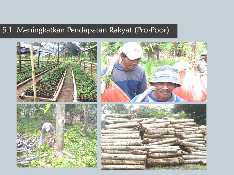 9.1 Meningkatkan Pendapatan Rakyat (Pro-Poor)