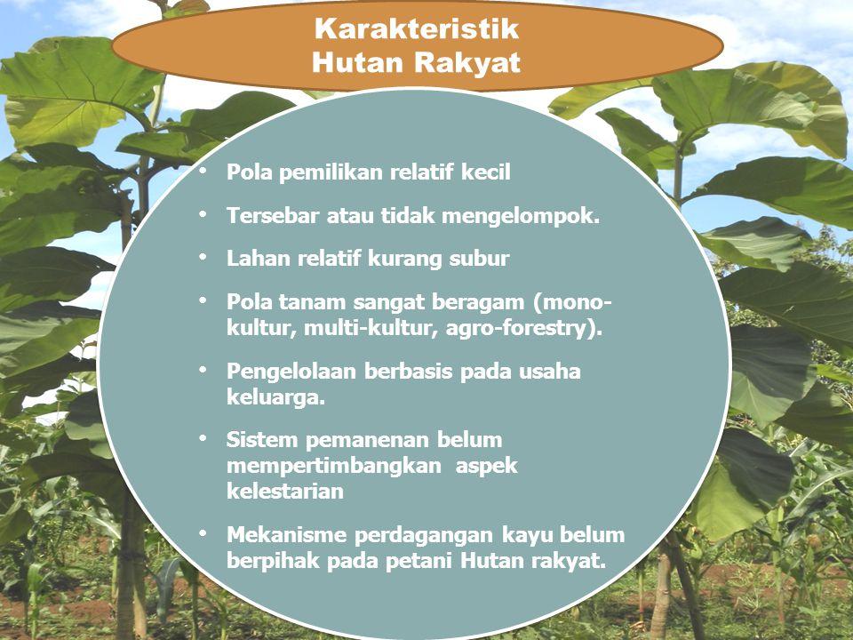 Karakteristik Hutan Rakyat Pola pemilikan relatif kecil Tersebar atau tidak mengelompok. Lahan relatif kurang subur Pola tanam sangat beragam (mono- k