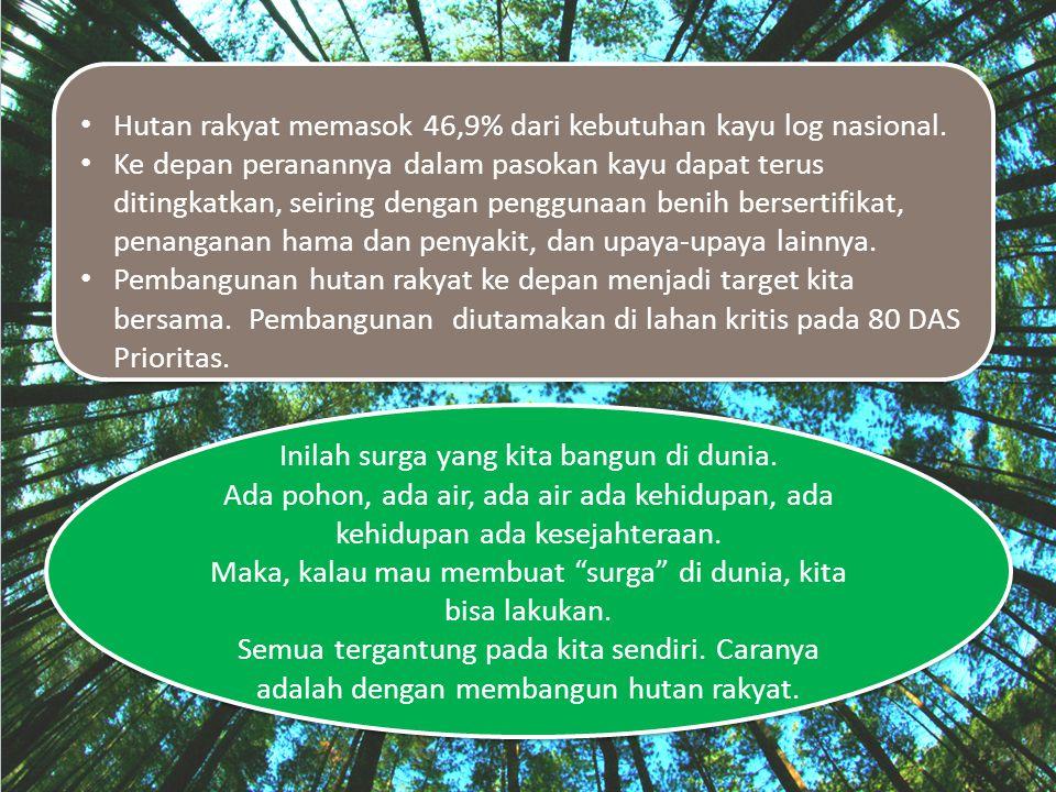 Hutan rakyat memasok 46,9% dari kebutuhan kayu log nasional. Ke depan peranannya dalam pasokan kayu dapat terus ditingkatkan, seiring dengan penggunaa