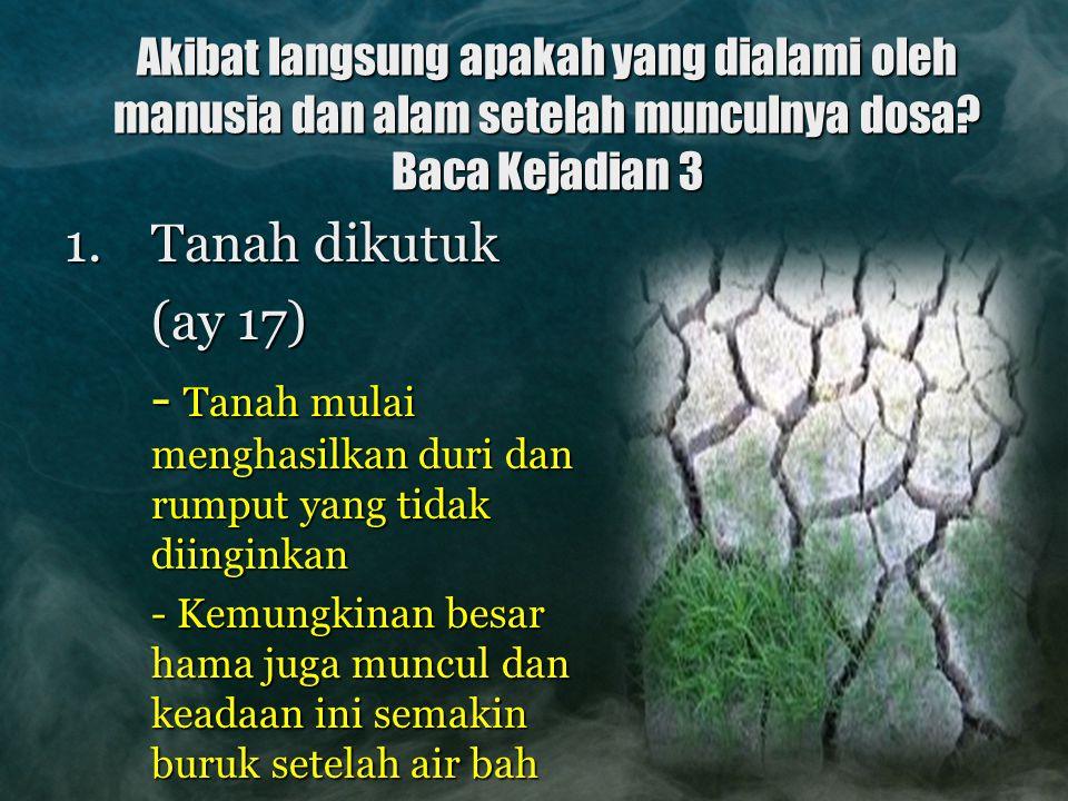 Akibat langsung apakah yang dialami oleh manusia dan alam setelah munculnya dosa? Baca Kejadian 3 1.Tanah dikutuk (ay 17) - Tanah mulai menghasilkan d