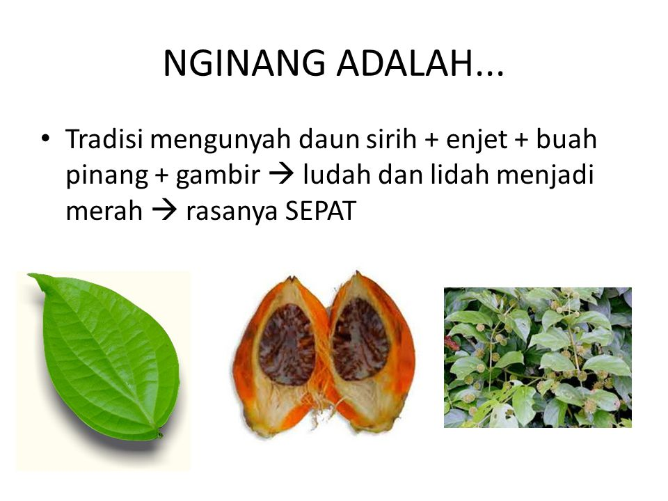 NGINANG ADALAH... Tradisi mengunyah daun sirih + enjet + buah pinang + gambir  ludah dan lidah menjadi merah  rasanya SEPAT