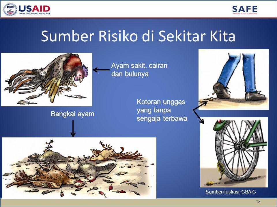 Sumber Risiko di Sekitar Kita 13 Ayam sakit, cairan dan bulunya Bangkai ayam Kotoran unggas yang tanpa sengaja terbawa Sumber ilustrasi: CBAIC