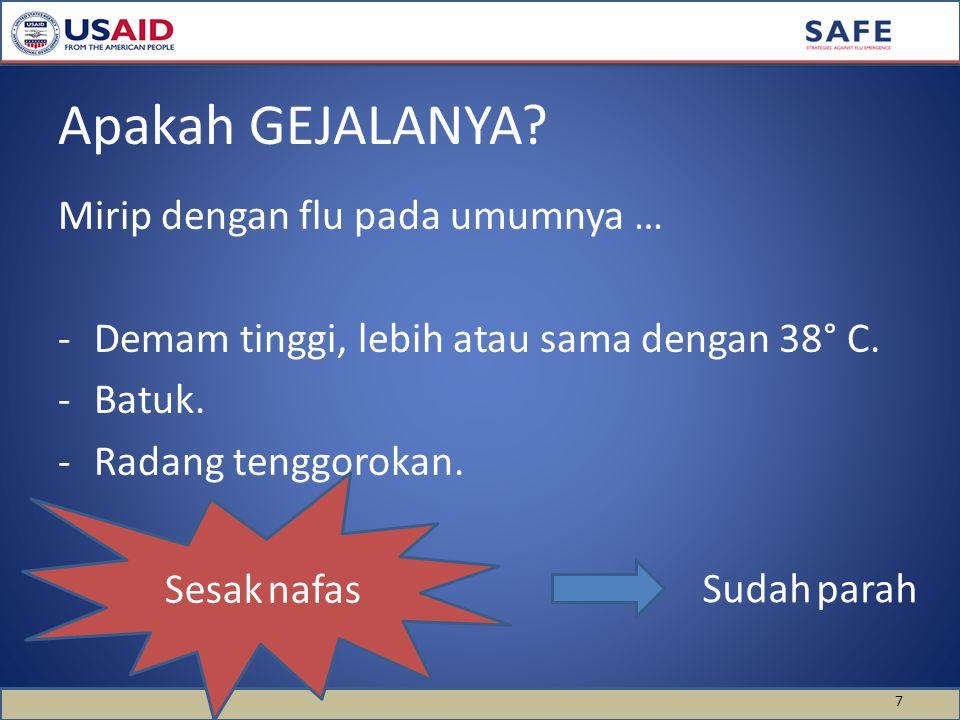 Mirip dengan flu pada umumnya … -Demam tinggi, lebih atau sama dengan 38° C.