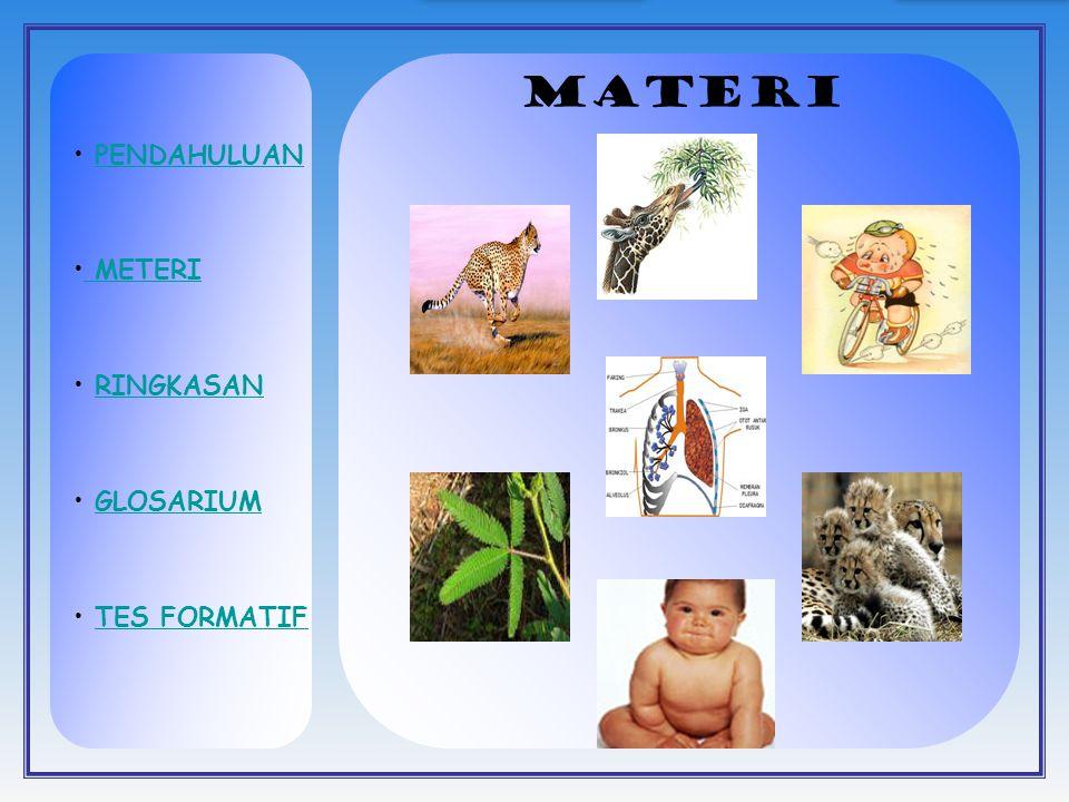 Pertumbuhan dipengaruhi oleh faktor hereditas (gen) dan faktor lingkungan APA BERKEMBANG ITU?.
