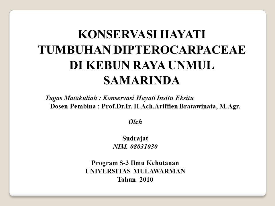 Tempat Rekreasi Alam ( Ekowisata) Fungsi Kebun Raya UNMUL sebagai tempat rekreasi adalah realisasi program kerjasama antara Pemerintah Kota Samarinda dengan Universitas Mulawarman, fungsi Kebun Raya Unmul Samarinda dan tempat wisata ini merupakan salah satu kebanggaan Pemerintah Kota Samarinda dan menjadi objek wisata di Propinsi Kalimantan Timur.