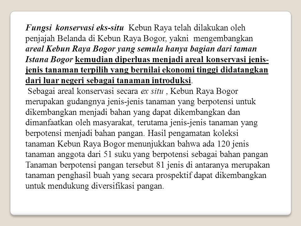 Fungsi konservasi eks-situ Kebun Raya telah dilakukan oleh penjajah Belanda di Kebun Raya Bogor, yakni mengembangkan areal Kebun Raya Bogor yang semul