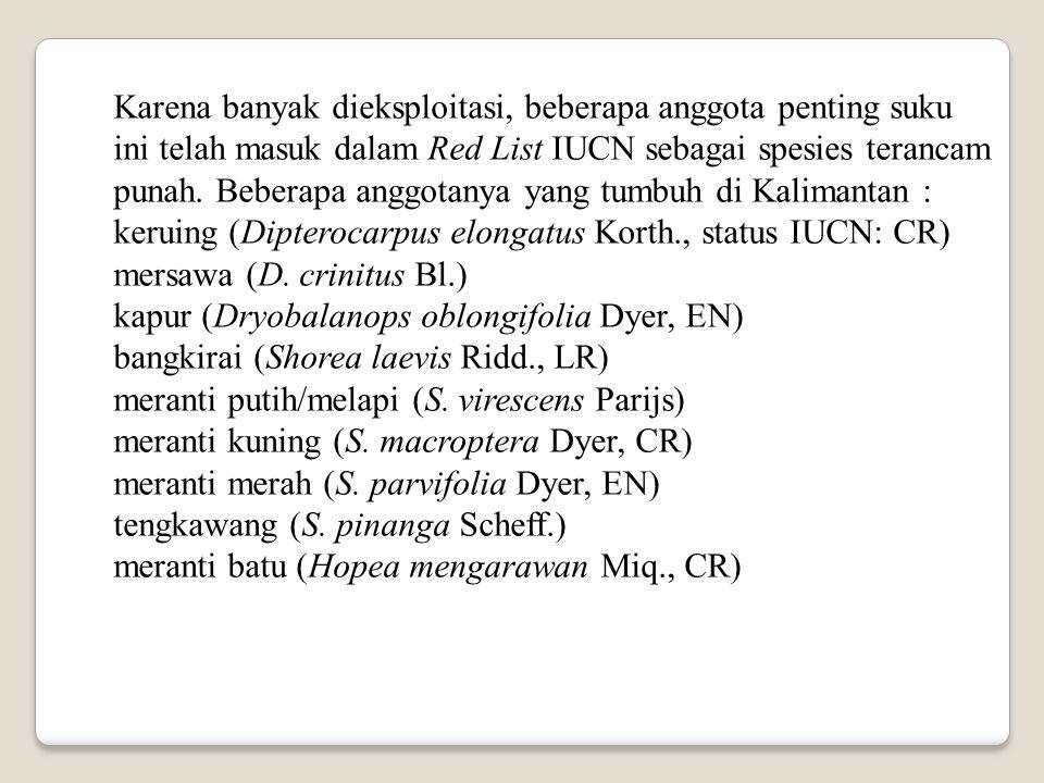 Karena banyak dieksploitasi, beberapa anggota penting suku ini telah masuk dalam Red List IUCN sebagai spesies terancam punah. Beberapa anggotanya yan