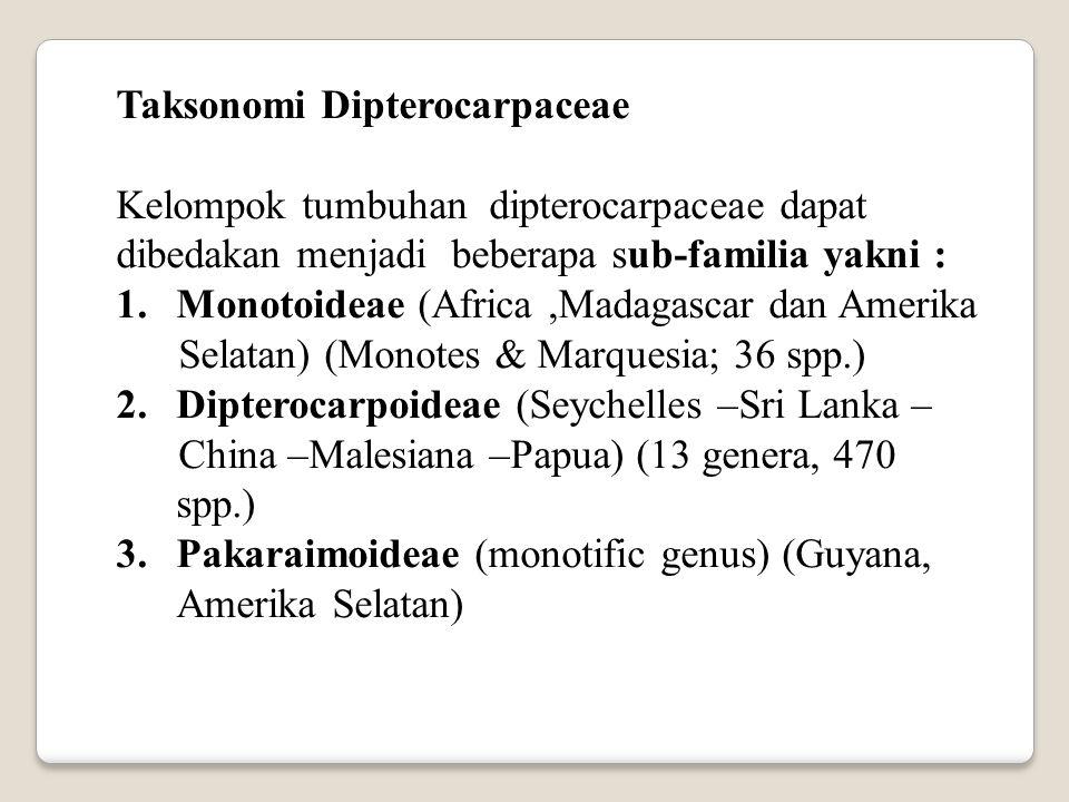 Taksonomi Dipterocarpaceae Kelompok tumbuhan dipterocarpaceae dapat dibedakan menjadi beberapa sub-familia yakni : 1.Monotoideae (Africa,Madagascar da