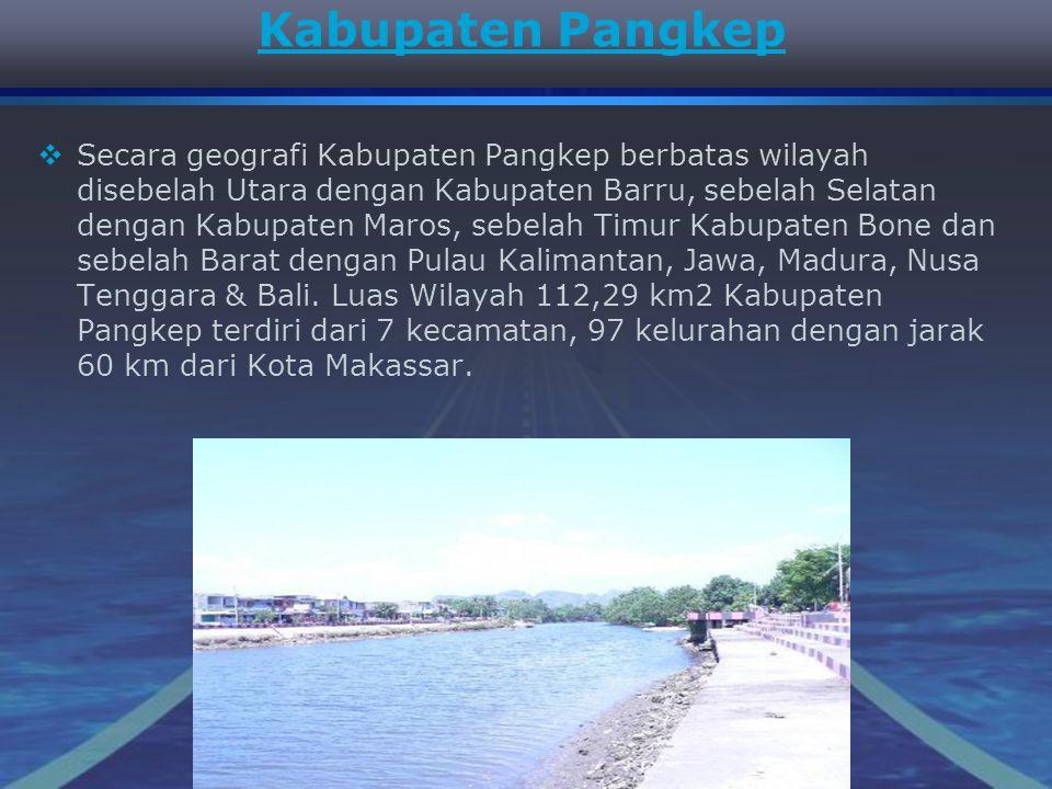Kabupaten Pangkep SSecara geografi Kabupaten Pangkep berbatas wilayah disebelah Utara dengan Kabupaten Barru, sebelah Selatan dengan Kabupaten Maros, sebelah Timur Kabupaten Bone dan sebelah Barat dengan Pulau Kalimantan, Jawa, Madura, Nusa Tenggara & Bali.