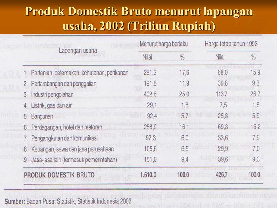Produk Domestik Bruto menurut lapangan usaha, 2002 (Triliun Rupiah)