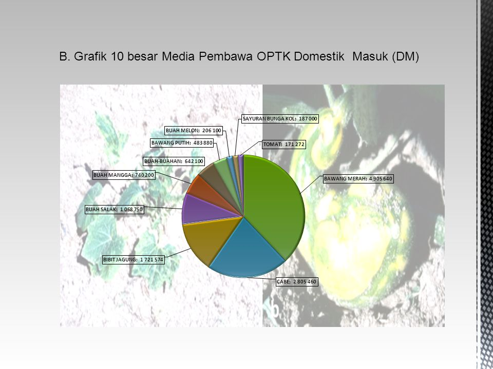 B. Grafik 10 besar Media Pembawa OPTK Domestik Masuk (DM)