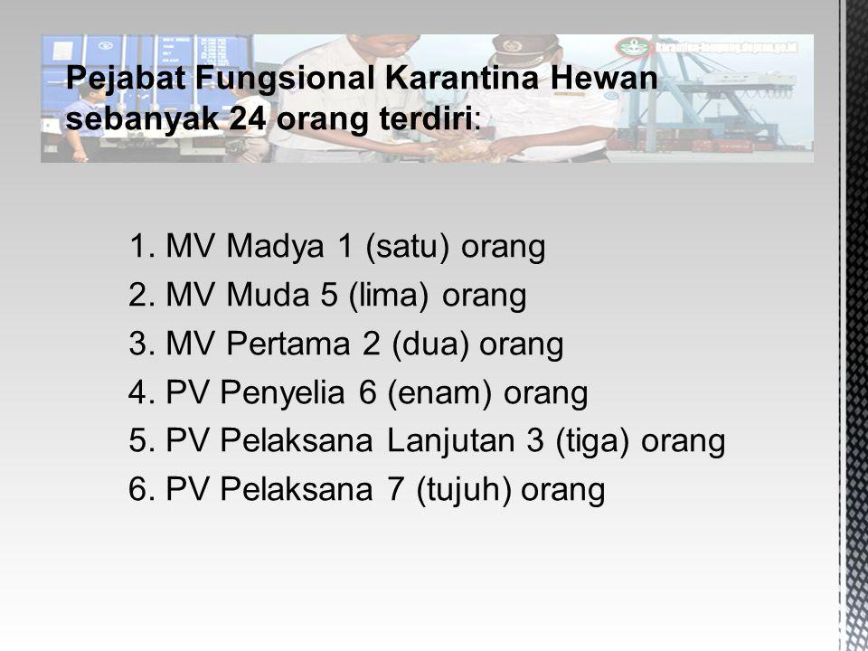 1. MV Madya 1 (satu) orang 2. MV Muda 5 (lima) orang 3. MV Pertama 2 (dua) orang 4. PV Penyelia 6 (enam) orang 5. PV Pelaksana Lanjutan 3 (tiga) orang