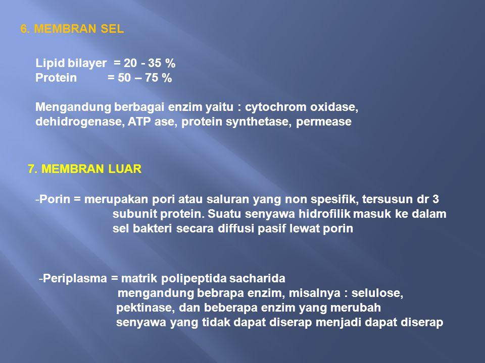 6. MEMBRAN SEL Lipid bilayer = 20 - 35 % Protein = 50 – 75 % Mengandung berbagai enzim yaitu : cytochrom oxidase, dehidrogenase, ATP ase, protein synt