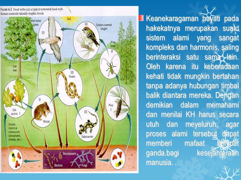 Keanekaragaman hayati pada hakekatnya merupakan suatu sistem alami yang sangat kompleks dan harmonis, saling berinteraksi satu sama lain.
