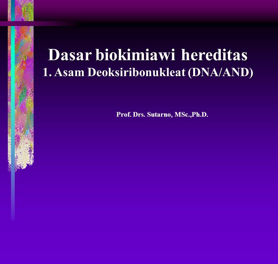 Prof. Drs. Sutarno, MSc.,Ph.D. Dasar biokimiawi hereditas 1. Asam Deoksiribonukleat (DNA/AND)