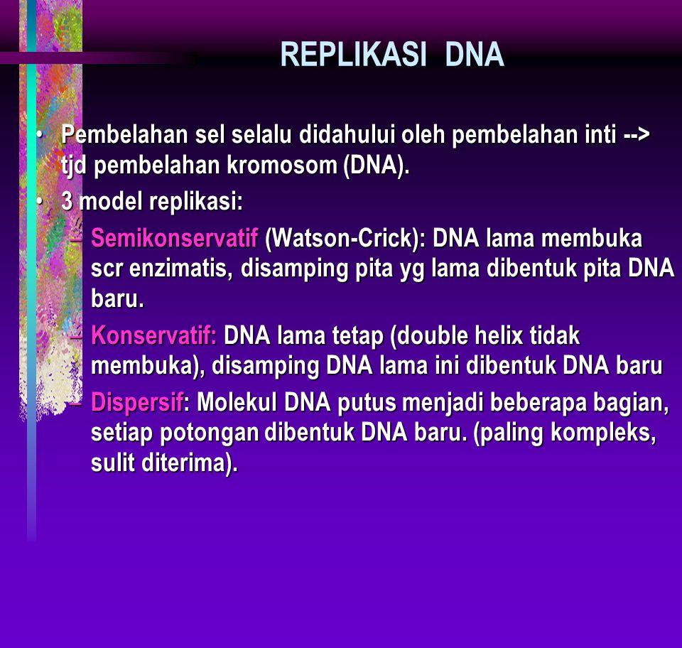 REPLIKASI DNA Pembelahan sel selalu didahului oleh pembelahan inti --> tjd pembelahan kromosom (DNA). Pembelahan sel selalu didahului oleh pembelahan